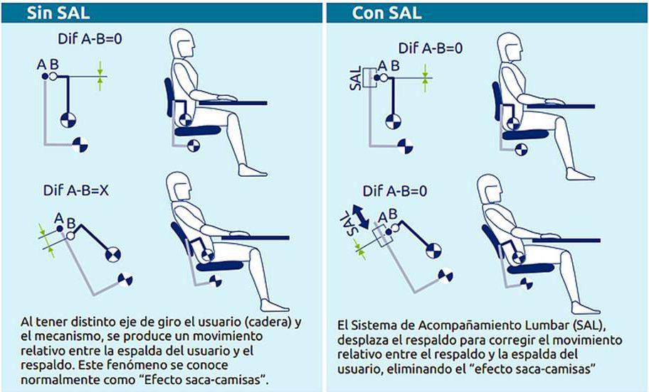 dolor de espalda | Ergonomik
